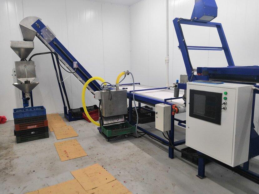 Оборудование под «ключ» для очистки,мойки, сортировки и шоковой заморозки ягод
